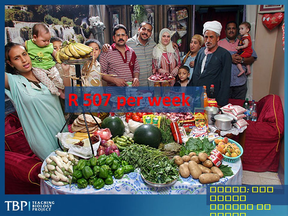 R 507 per week Egypt: The Ahmed family of Cairo
