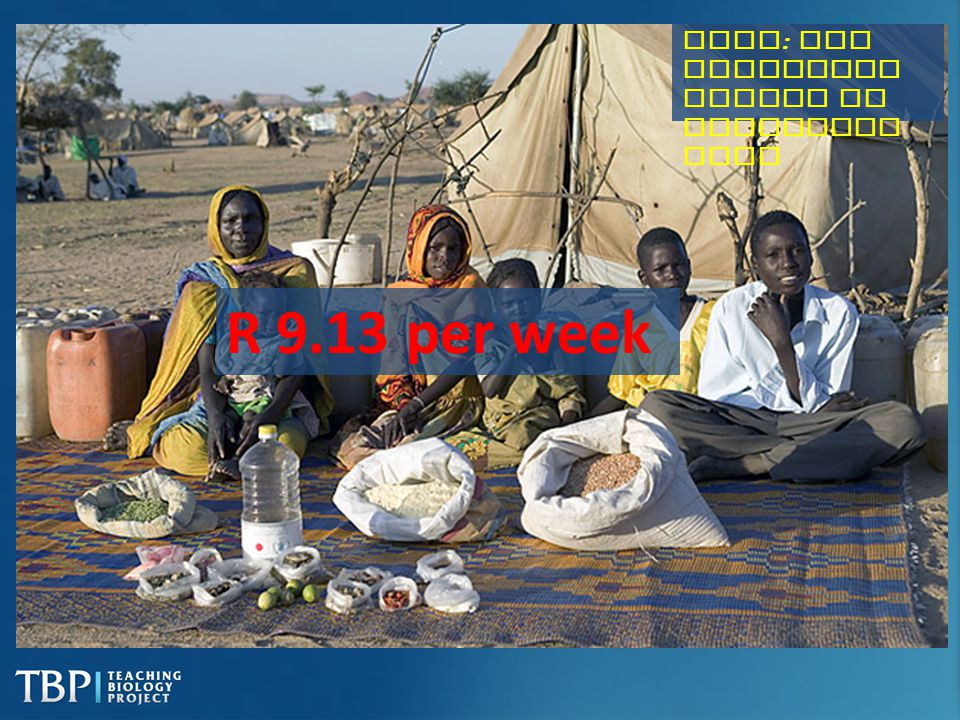 Chad: The Aboubakar family of Breidjing Camp