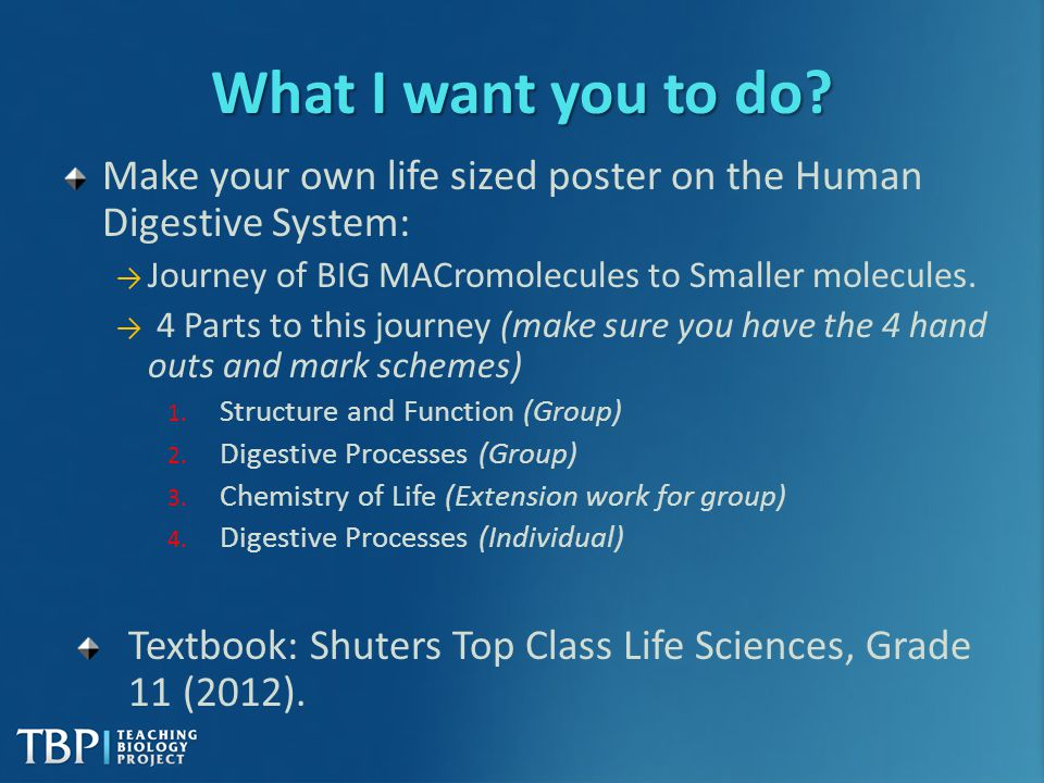 What I want you to do Make your own life sized poster on the Human Digestive System: Journey of BIG MACromolecules to Smaller molecules.