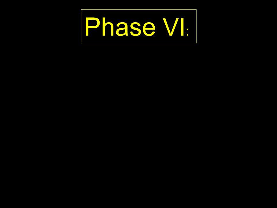 Phase VI: