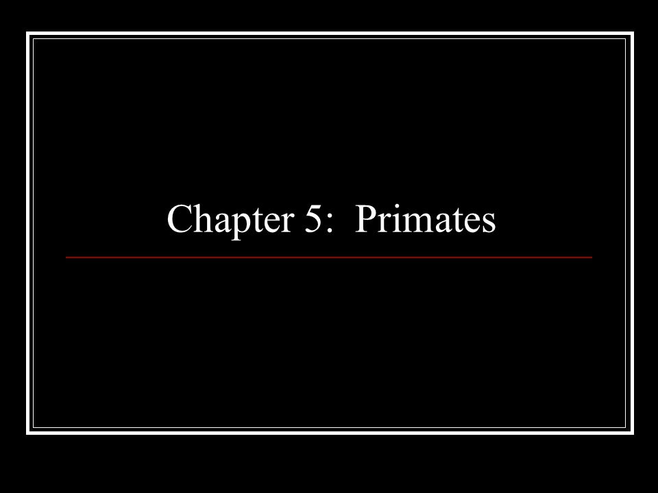 Chapter 5: Primates