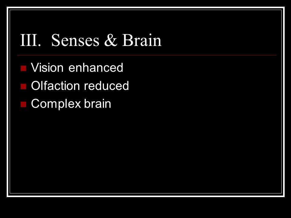 III. Senses & Brain Vision enhanced Olfaction reduced Complex brain