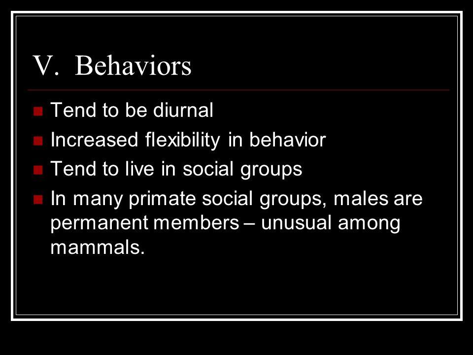 V. Behaviors Tend to be diurnal Increased flexibility in behavior