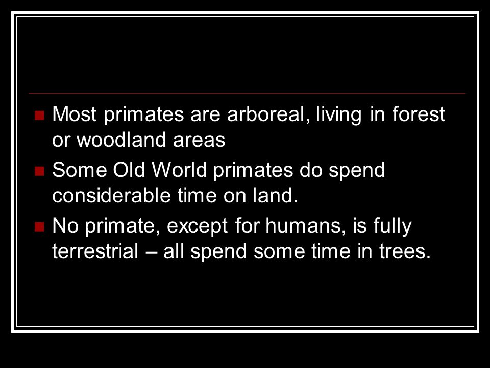 Most primates are arboreal, living in forest or woodland areas