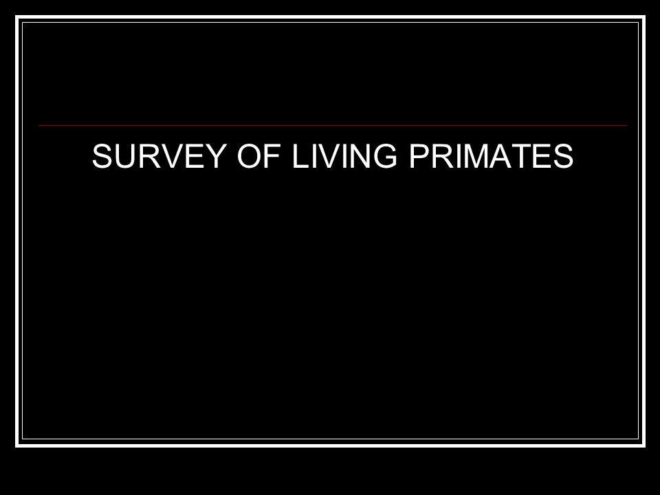 SURVEY OF LIVING PRIMATES