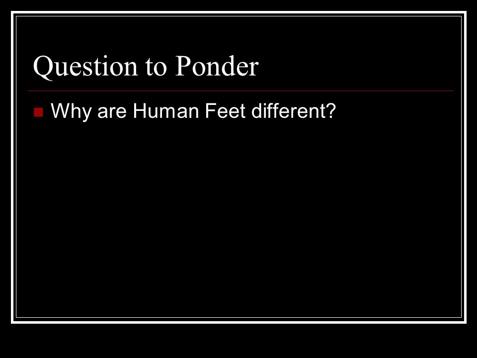Question to Ponder Why are Human Feet different