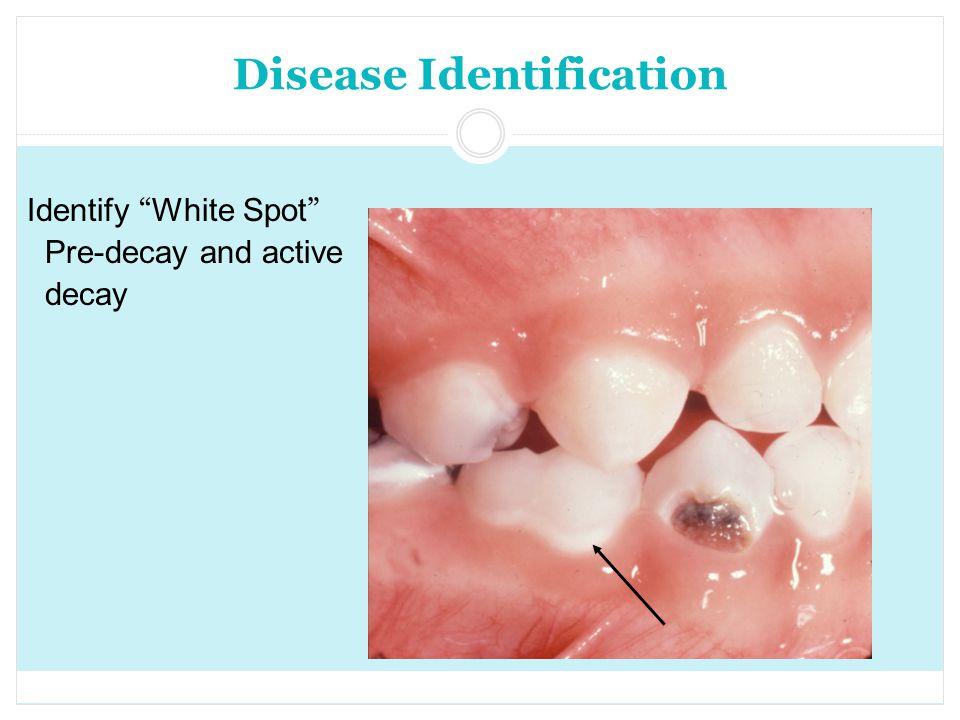 Disease Identification