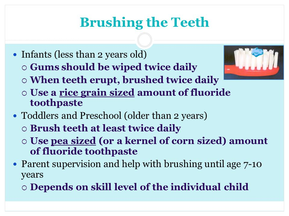 Brushing the Teeth Infants (less than 2 years old)