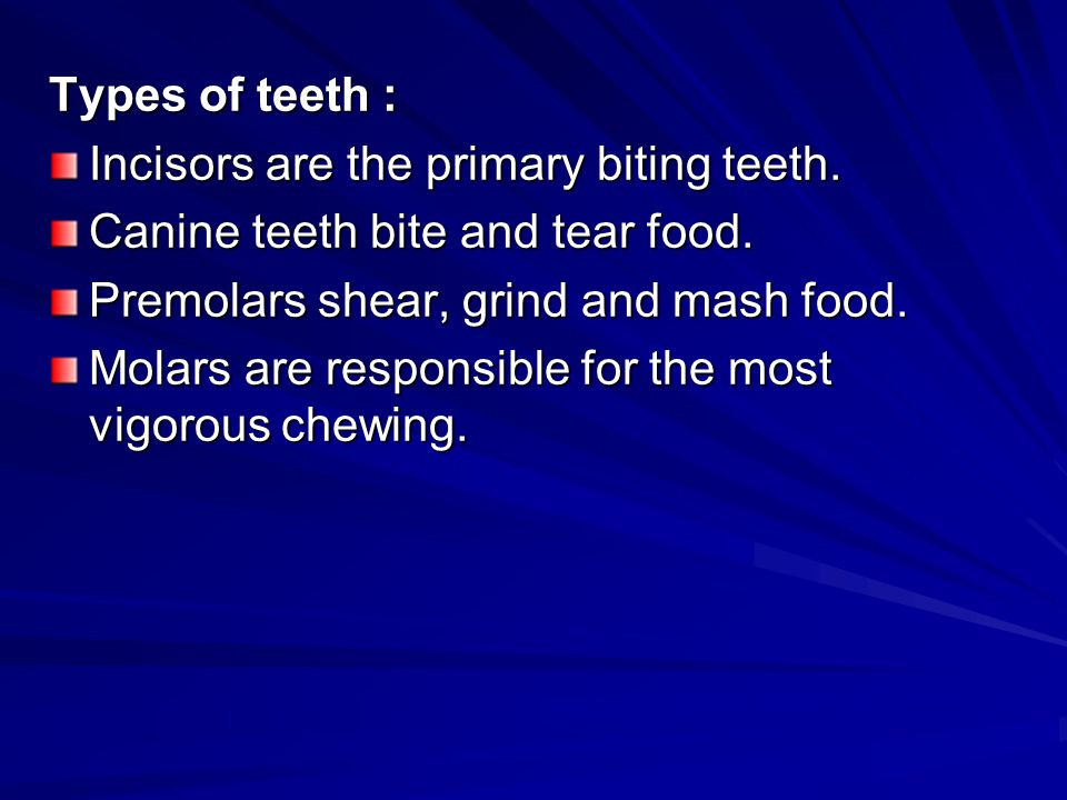 Types of teeth : Incisors are the primary biting teeth. Canine teeth bite and tear food. Premolars shear, grind and mash food.