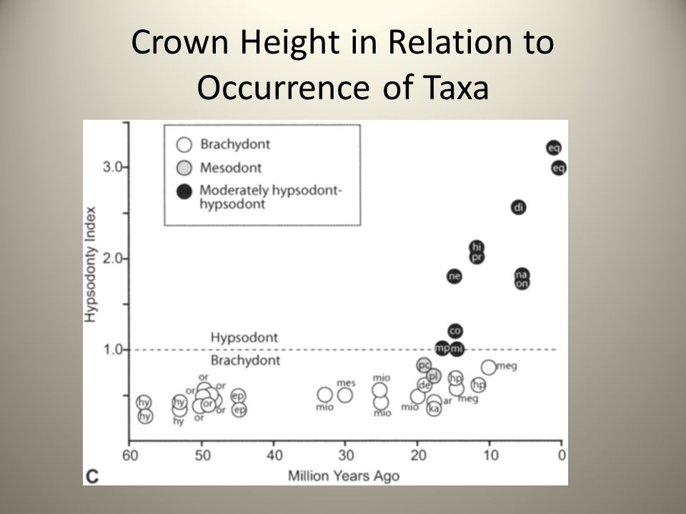 Crown Height in Relation to Occurrence of Taxa
