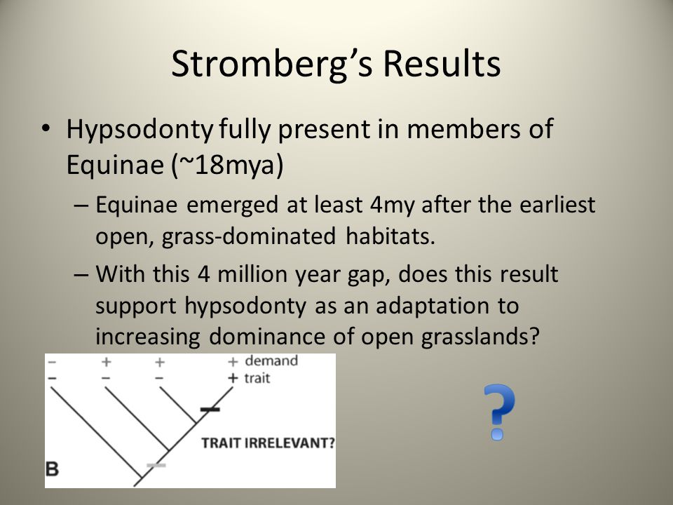 Stromberg's Results Hypsodonty fully present in members of Equinae (~18mya)