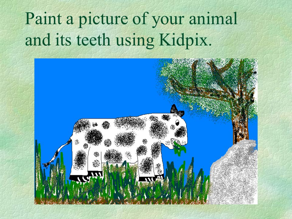 Paint a picture of your animal and its teeth using Kidpix.