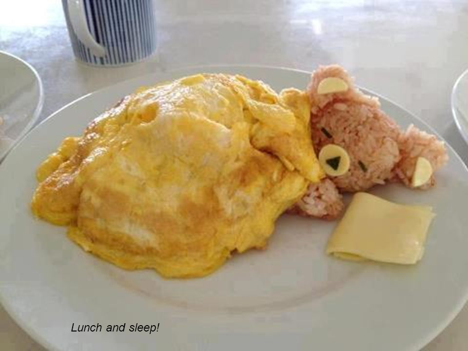 Lunch and sleep!