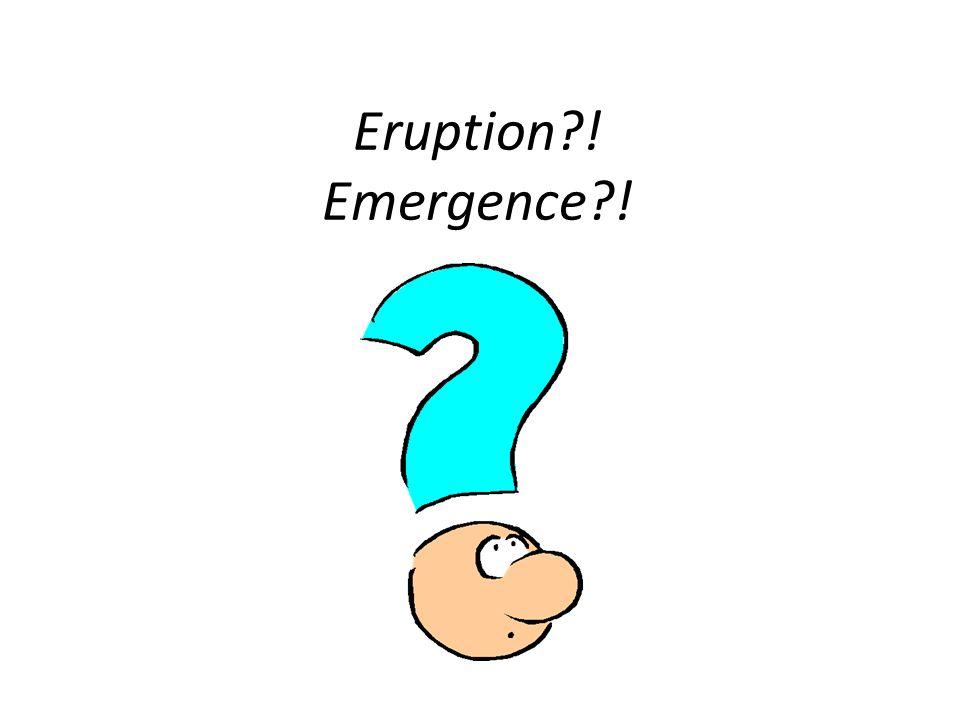 Eruption ! Emergence !