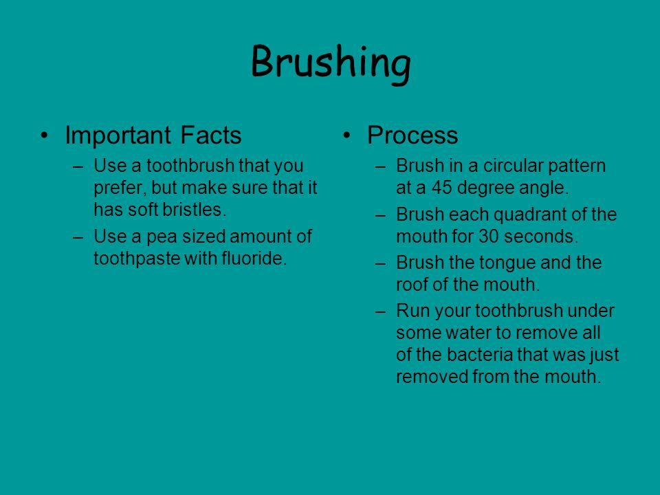 Brushing Important Facts Process