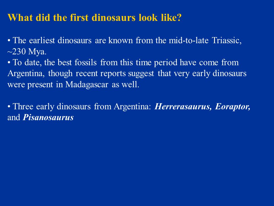 What did the first dinosaurs look like