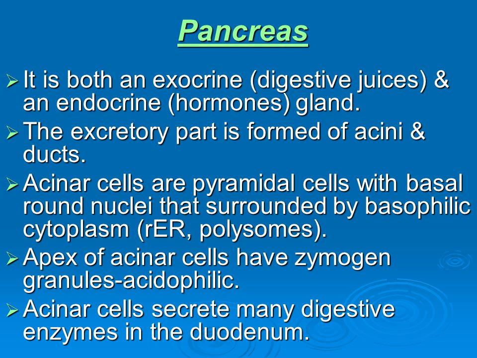 Pancreas It is both an exocrine (digestive juices) & an endocrine (hormones) gland. The excretory part is formed of acini & ducts.