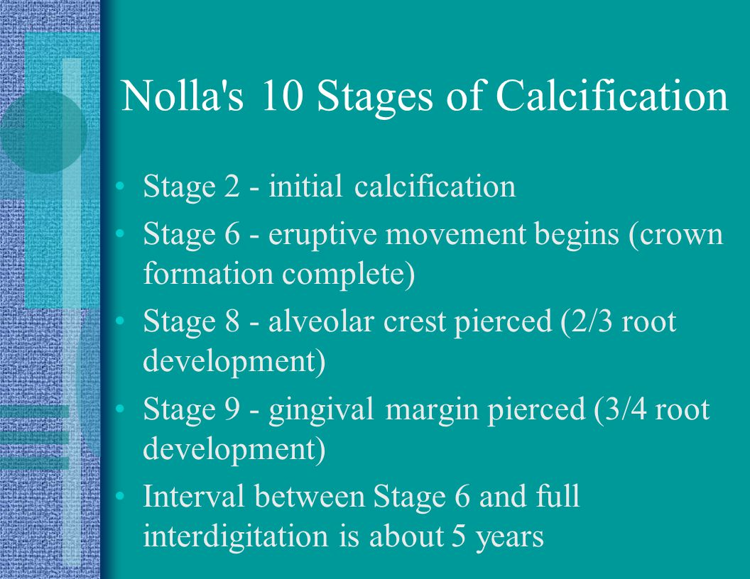 Nolla s 10 Stages of Calcification