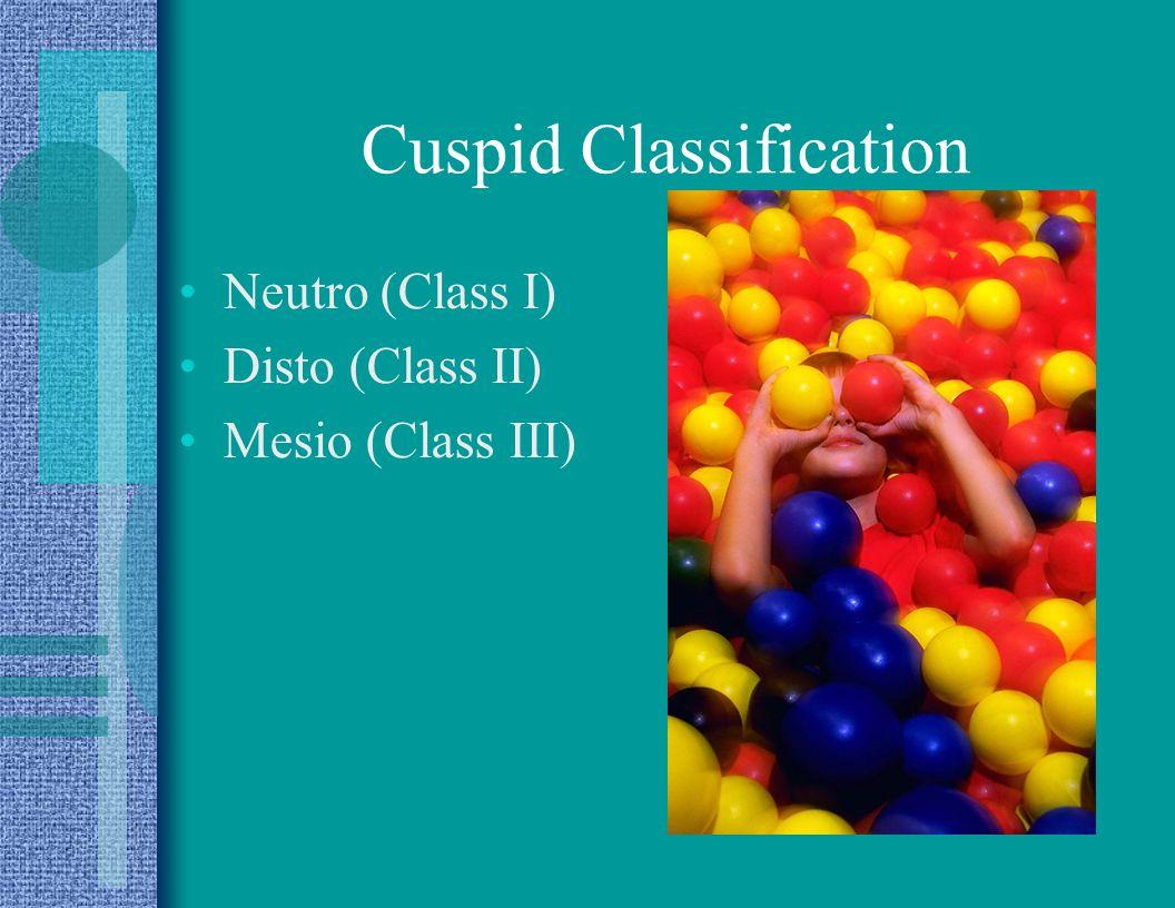 Cuspid Classification