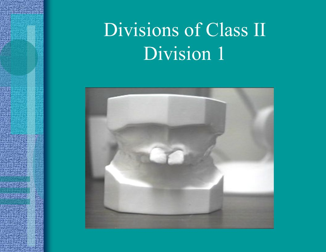 Divisions of Class II Division 1