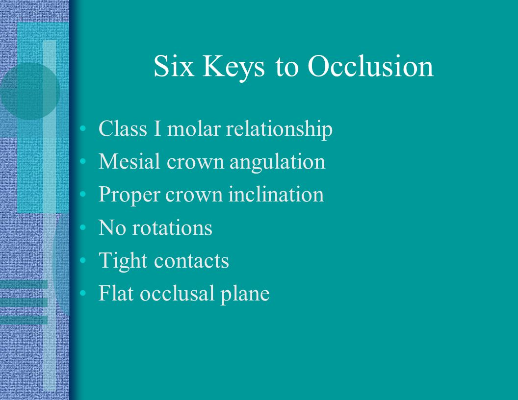 Six Keys to Occlusion Class I molar relationship