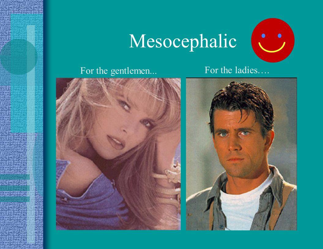 Mesocephalic For the gentlemen... For the ladies….