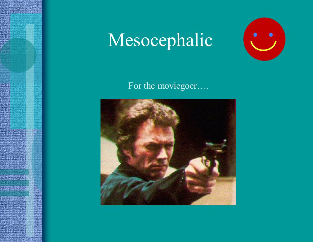 Mesocephalic For the moviegoer….