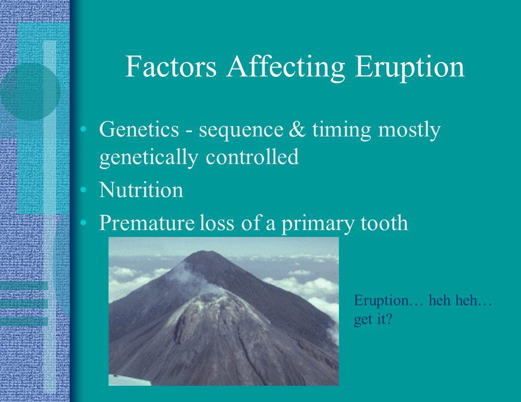 Factors Affecting Eruption