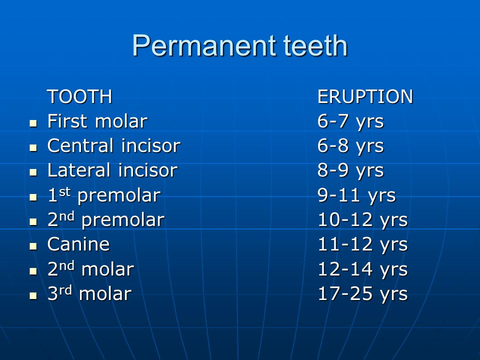 Permanent teeth TOOTH ERUPTION First molar 6-7 yrs