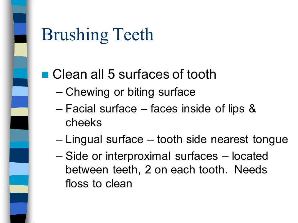 Brushing Teeth Clean all 5 surfaces of tooth Chewing or biting surface