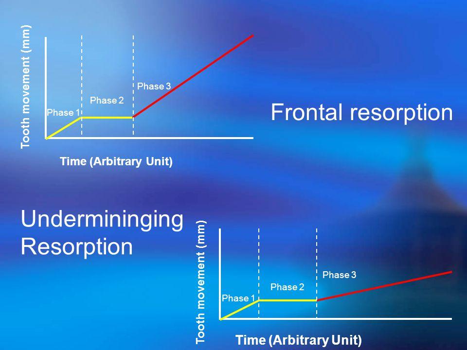 Frontal resorption Undermininging Resorption Time (Arbitrary Unit)