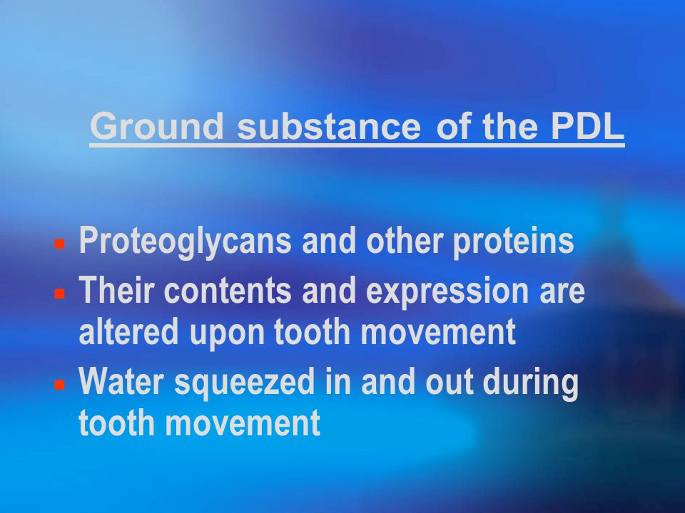 Ground substance of the PDL