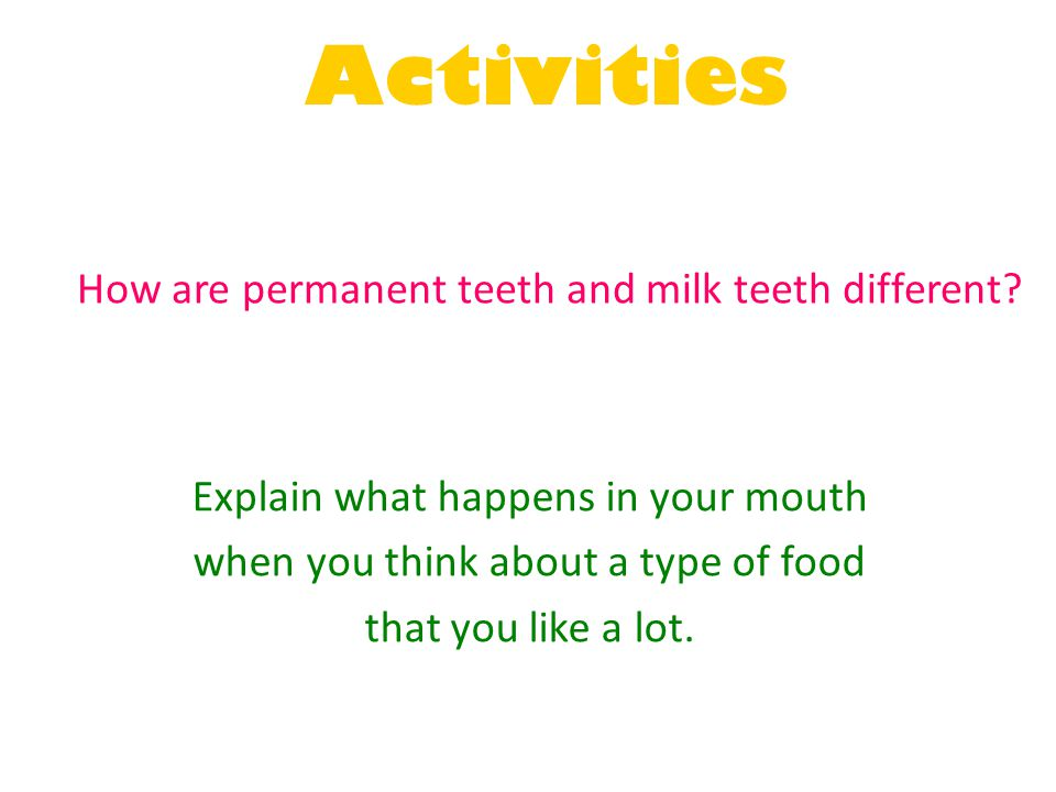Activities How are permanent teeth and milk teeth different