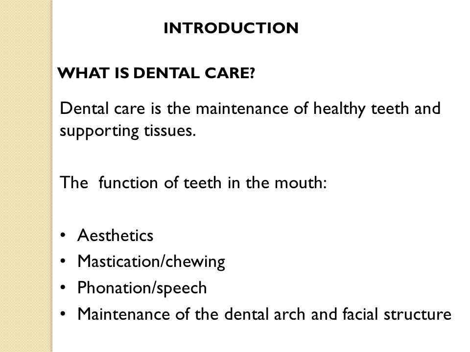 The function of teeth in the mouth: Aesthetics Mastication/chewing