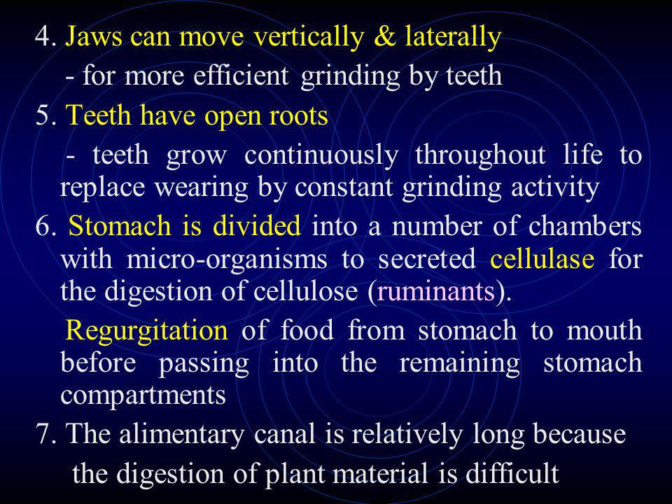 4. Jaws can move vertically & laterally