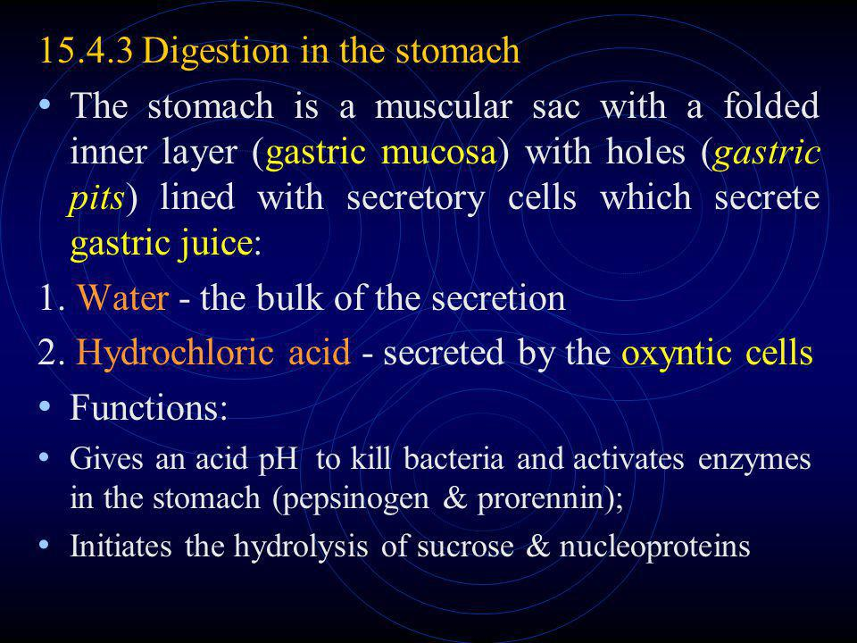 15.4.3 Digestion in the stomach