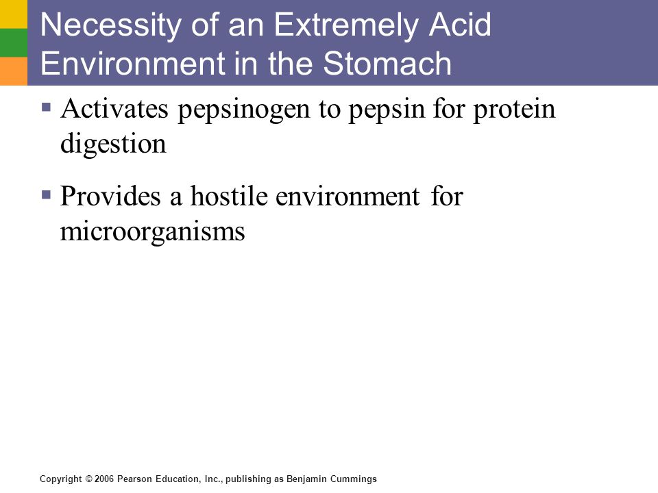 Necessity of an Extremely Acid Environment in the Stomach