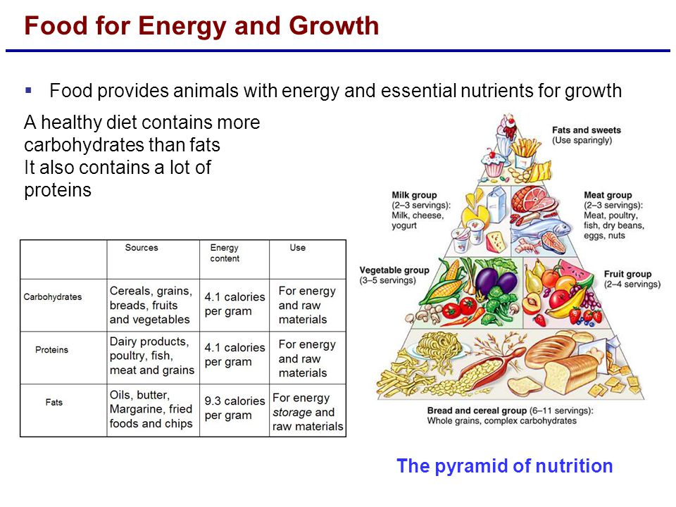 Food for Energy and Growth