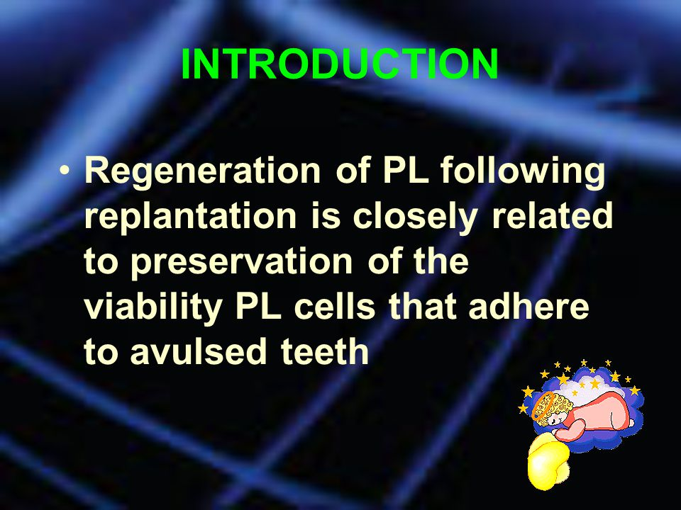 INTRODUCTION Regeneration of PL following replantation is closely related to preservation of the viability PL cells that adhere to avulsed teeth.
