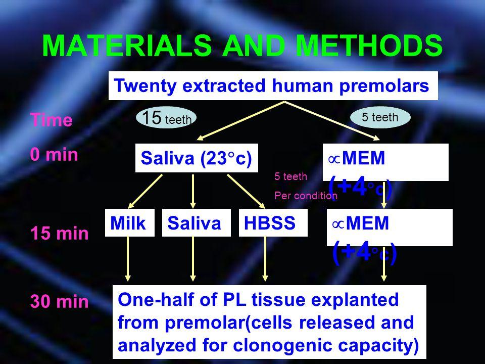 MATERIALS AND METHODS Twenty extracted human premolars Time 0 min