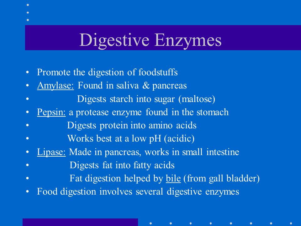 Digestive Enzymes Promote the digestion of foodstuffs