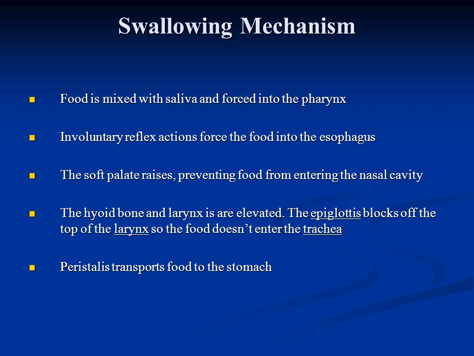 Swallowing Mechanism Food is mixed with saliva and forced into the pharynx. Involuntary reflex actions force the food into the esophagus.