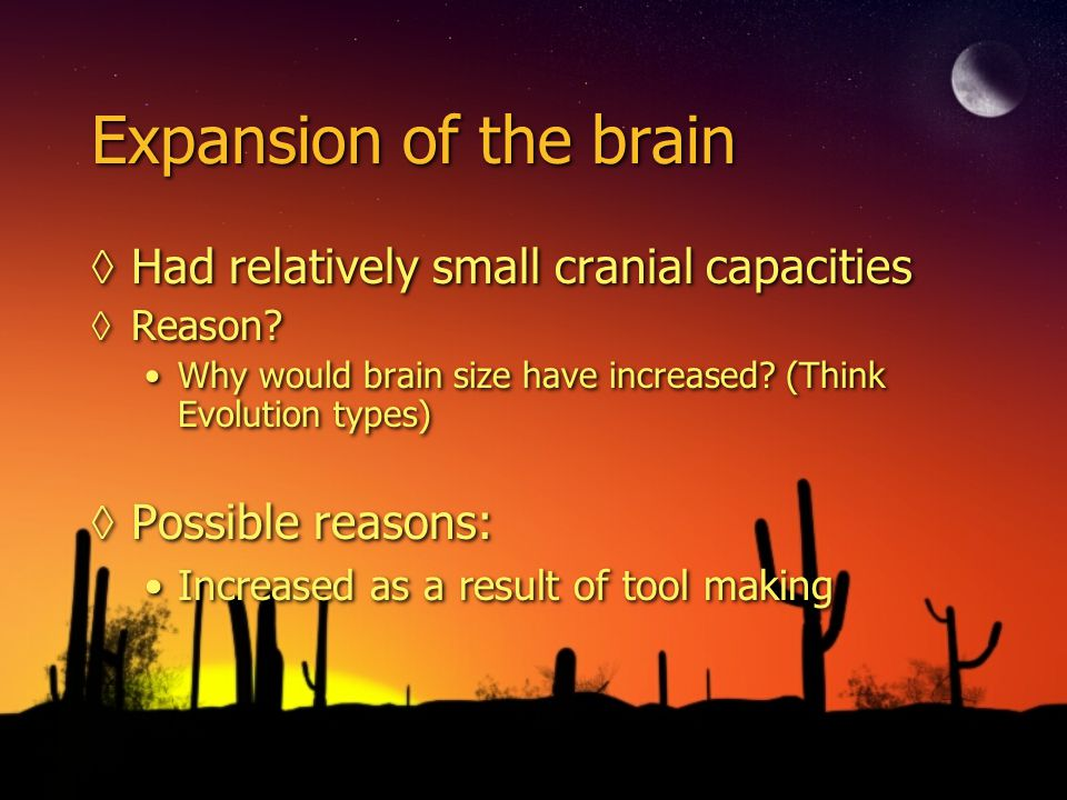 Expansion of the brain Had relatively small cranial capacities