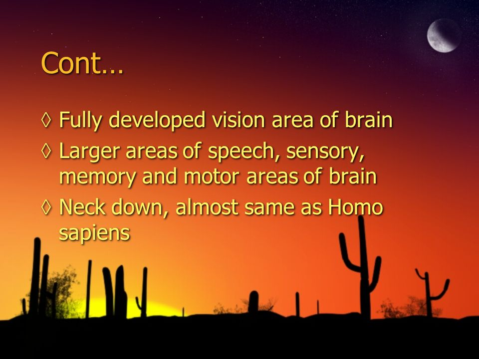 Cont… Fully developed vision area of brain
