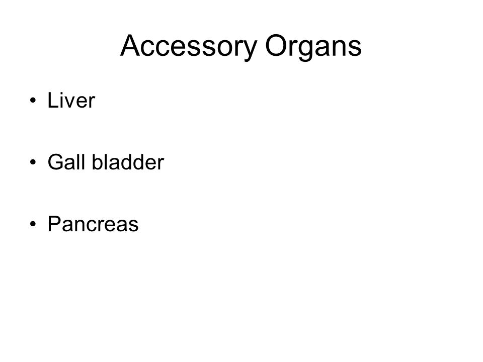 Accessory Organs Liver Gall bladder Pancreas