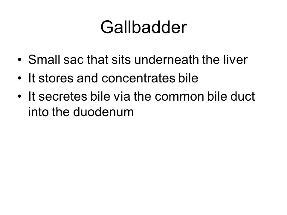 Gallbadder Small sac that sits underneath the liver