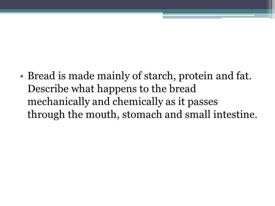 Bread is made mainly of starch, protein and fat