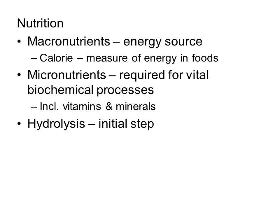 Macronutrients – energy source
