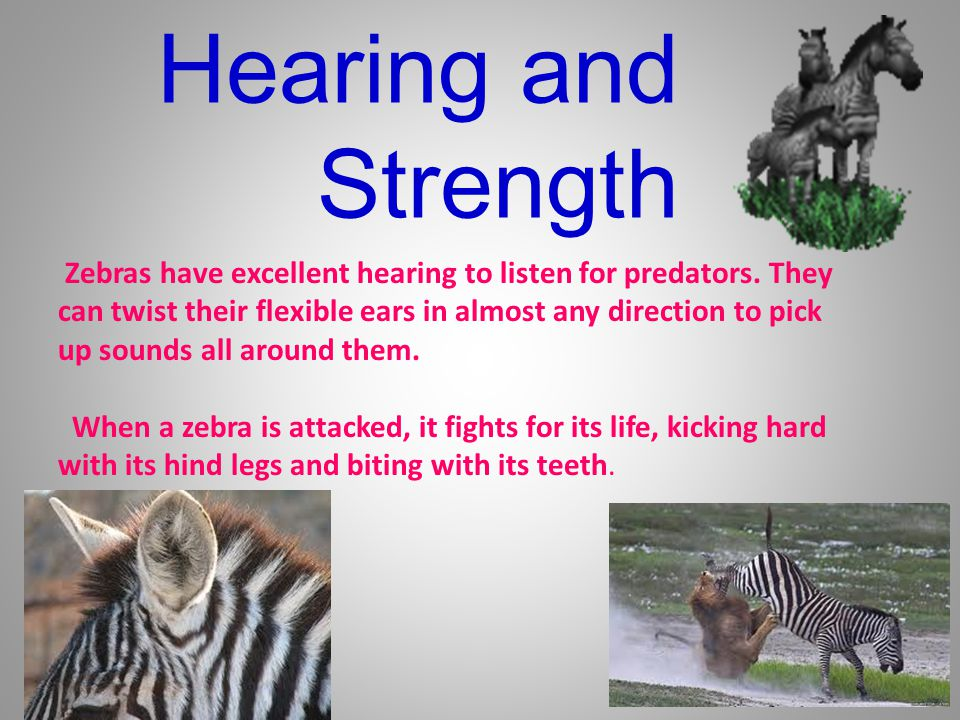Hearing and Strength