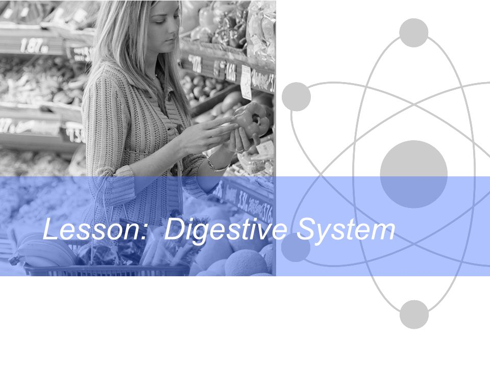 Lesson: Digestive System
